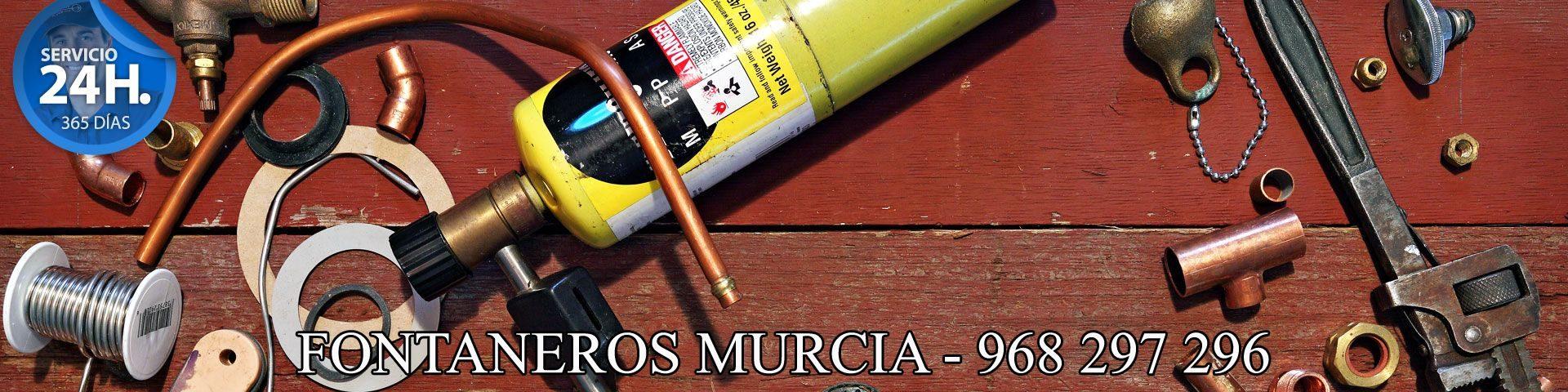 Fontaneros Murcia